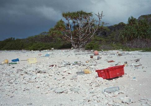 Αποτέλεσμα εικόνας για henderson island